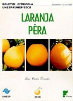 LARANJA-PÊRA