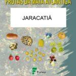 Jaracatiá: Série Frutas da Mata Atlântica