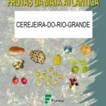 Cerejeira-do-Rio-Grande Série Frutas da Mata Atlântica
