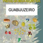 Guabijuzeiro - Série Frutas da Mata Atlântica