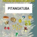 Pitangatuba Série Frutas da Mata Atlântica