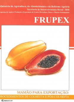 Mamão para Exportação: Procedimentos de Colheita e Pós-Colheita