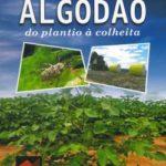 Algodão do Plantio à Colheita