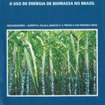 O Uso de Energia de Biomassa no Brasil