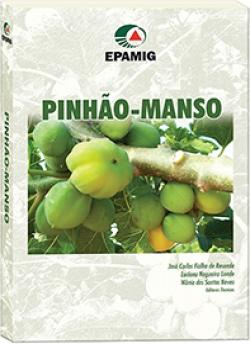 Pinhão-Manso