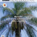 Informe Agropecuário 265 - Macaúba:potencial e sustentabilidade para o biodiesel