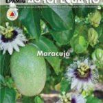 Informe Agropecuário 269 - Maracujá