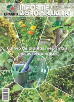 Informe Agropecuário 283 - Cultivo de plantas medicinais e usos terapêuticos