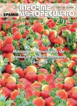 Informe Agropecuário 279 - Morango: tecnologias de produção ambientalmente corretas