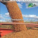 Informe Agropecuário 278 - Sorgo: inovações tecnológicas