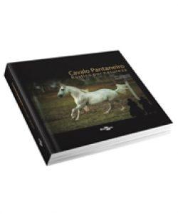 Cavalo Pantaneiro rustico por natureza