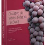 O cultivo da videira Niágara no Brasil