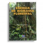 energia biomassa florestal
