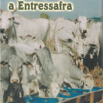 Estratégias para a Entressafra Vol.7