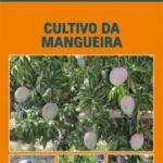 Cultivo da Mangueira-2471