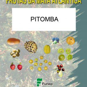 Pitomba: Série Frutas da Mata Atlântica-2411