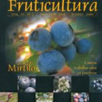 Revista Brasileira de Fruticultura - Mirtilo-2418